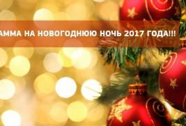 Новогодняя ночь 2017 года